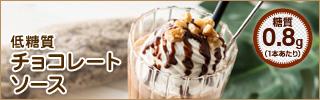 低糖質チョコレートソース チョコソース ホットチョコ ホットココア ショコラショー チョコレートドリンク
