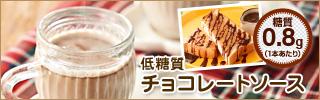 低糖質チョコレートソース チョコソース ホットチョコ ホットココア ショコラショー
