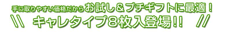 キャレタイプ8枚入り登場!